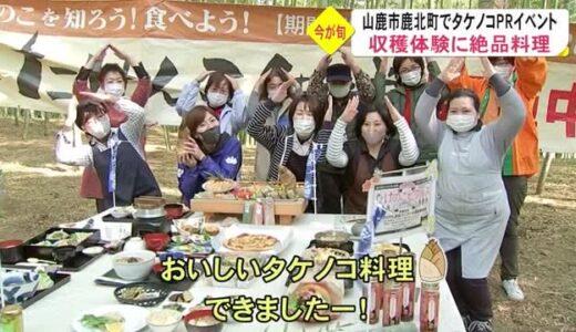 山鹿市でたけんこ街道 料理に体験も【熊本】